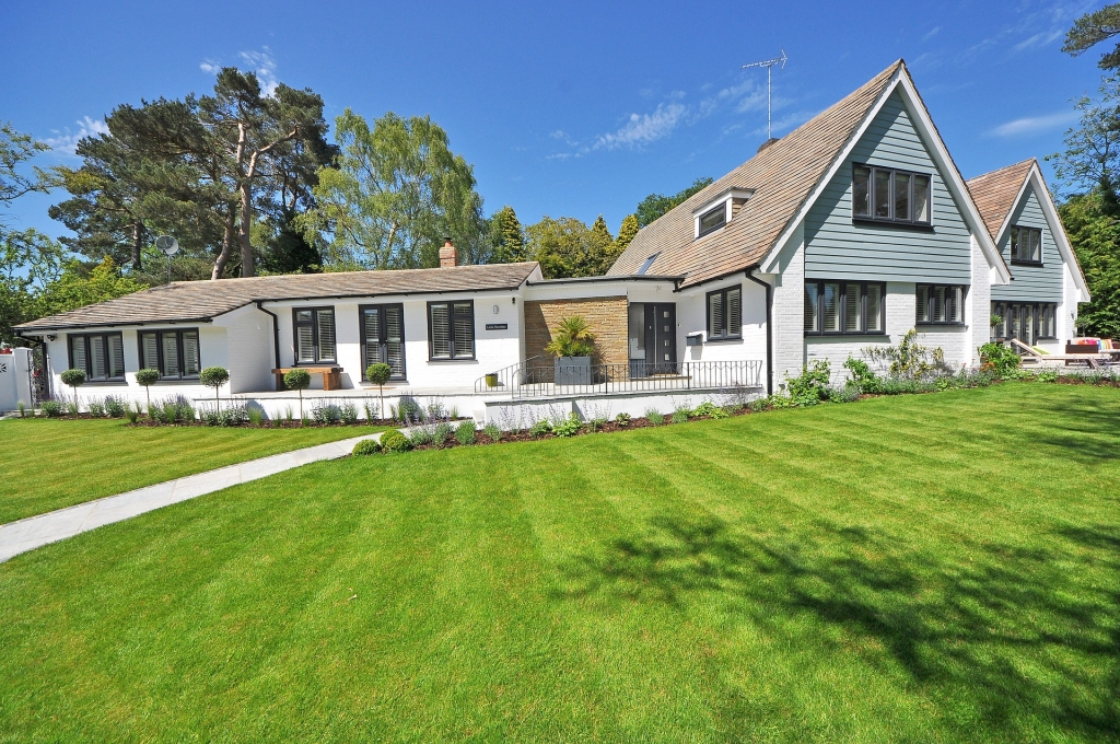 Boost Your Curb Appeal with these Helpful Lawn and Yard Care Tips!